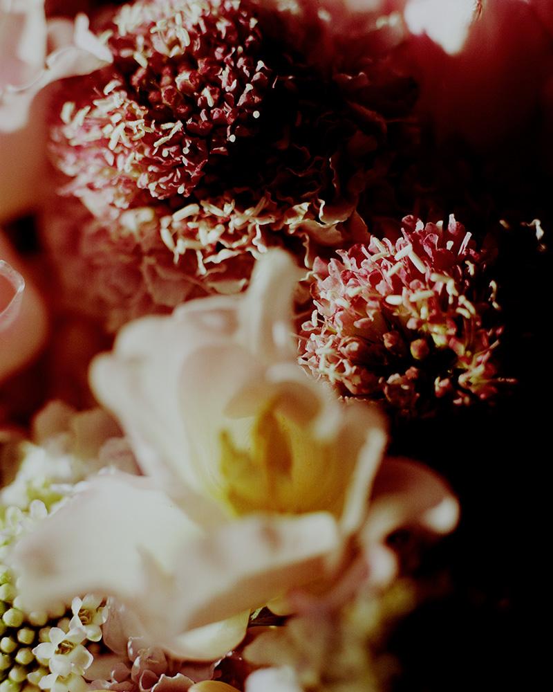Flowers_20-05