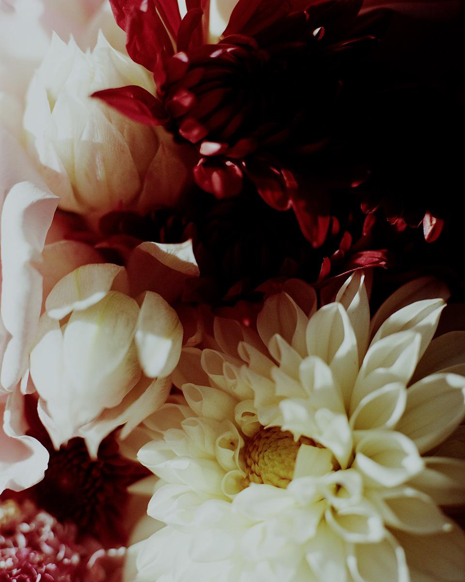 1810_Flowers_24-04